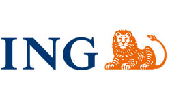 ing business case study